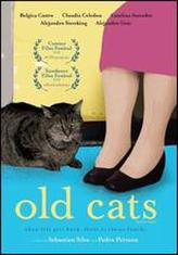 Old Cats showtimes and tickets
