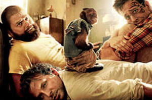 You Rate the New Releases: 'The Hangover 2' and 'Kung Fu Panda 2'