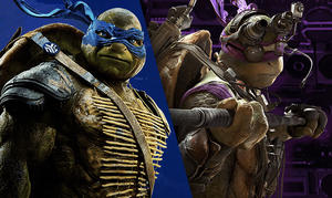 Which Ninja Turtle Hero Are You?