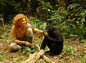 Check out all the movie photos of 'Bonobos: Back To The Wild'