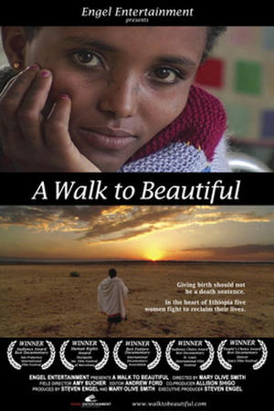 """Poster art for """"A Walk to Beautiful."""""""