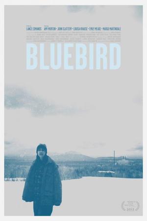 "Tribeca Poster Art for ""Bluebird."""