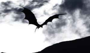 """A scene from """"Dragons: Real Myths and Unreal Creatures."""""""