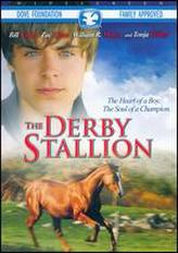 The Derby Stallion showtimes and tickets