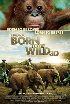 """Poster art for """"Born to Be Wild."""""""