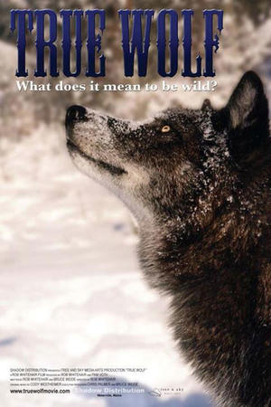 "Poster art for ""True Wolf."""