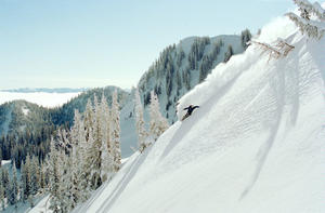 "Travis Rice in ""The Art of Flight."""