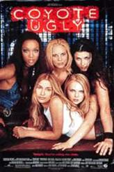 Coyote Ugly showtimes and tickets