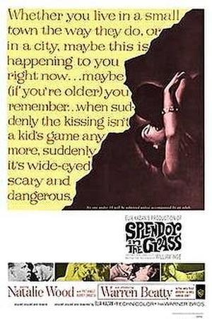 """Poster art for """"Splendor in the Grass."""""""