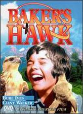 Baker's Hawk showtimes and tickets