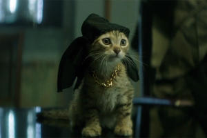 'Keanu' Red-Band Trailer: Key and Peele Put the Cutest Cat Ever into an Action Movie