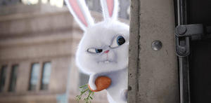 Meet Kevin Hart's Hyper Bunny in a New Trailer for 'The Secret Life of Pets'