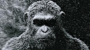 Watch Menacing Teases for 'War for the Planet of the Apes' and 'John Wick: Chapter 2'