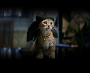 Check out the movie photos of 'Keanu'