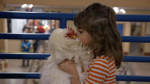 Check out the movie photos of 'Chicken People'