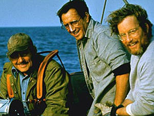 "A scene in ""Jaws."""