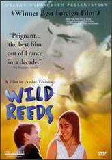 Wild Reeds showtimes and tickets