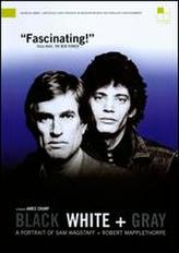 Black White + Gray: A Portrait of Sam Wagstaff and Robert Mapplethorpe showtimes and tickets