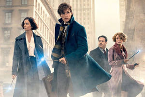 Everything We Know About the Sequel to 'Fantastic Beasts and Where to Find Them'