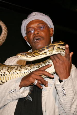 "Samuel L. Jackson at the Los Angeles premiere of ""Snakes on a Plane"""