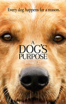 A Dog's Purpose showtimes and tickets