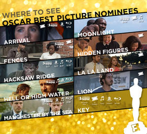 How To Watch Every Best Picture Oscar Nominee Right Now