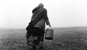 """A scene from """"The Turin Horse."""""""