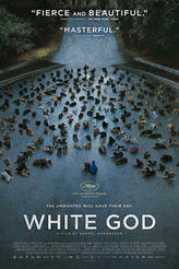 White God showtimes and tickets