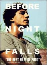 Before Night Falls showtimes and tickets