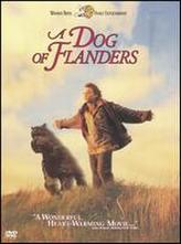 Dog Of Flanders showtimes and tickets