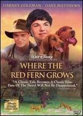 Where the Red Fern Grows showtimes and tickets