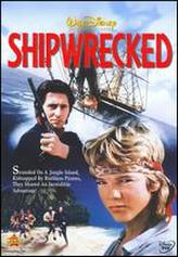 The Shipwrecked showtimes and tickets