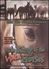 The King of the Wild Horses showtimes and tickets