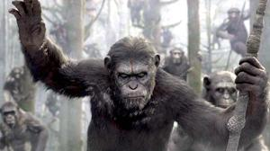 Watch: What if 'Dawn of the Planet of the Apes' and 'Boyhood' Were the Same Movie?