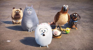 QUIZ: Which Movie Pet Should Belong to You?