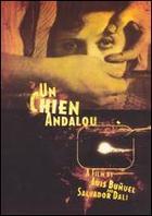 Un Chien Andalou Synopsis - Plot Summary - Fandango.