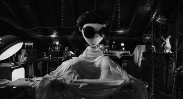 "Victor Voiced by Charlie Tahan in ""Frankenweenie."""