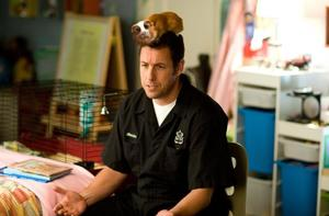 Adam Sandler in &quot;Bedtime Stories.&quot;
