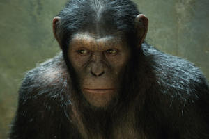 Andy Serkis as Caesar in ``Rise of the Planet of the Apes.&#39;&#39;