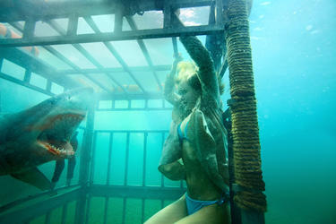 A scene in &quot;Shark Night 3D.&quot;