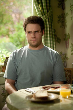 "Seth Rogen as Andrew Brewster in ""The Guilt Trip."""