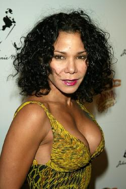 "Daphne Rubin-Vega at the after party of the opening of ""Anna in the Tropics."""