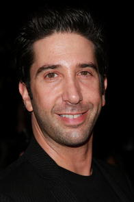 David Schwimmer Picture