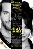 "Poster art for ""Silver Linings Playbook."""