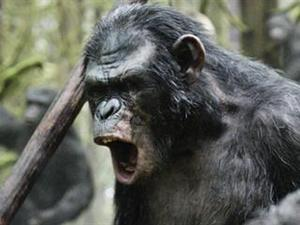 Exclusive: Dawn of the Planet of the Apes - The Threat Featurette