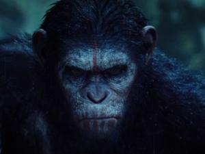 Dawn Of The Planet Of The Apes (Uk Tv Spot)