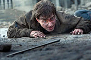 You Rate the New Releases: 'Harry Potter and the Deathly Hallows: Part 2'