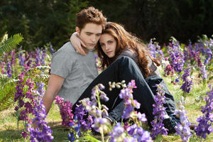 "Robert Pattinson and Kristen Stewart in ""The Twilight Saga: Breaking Dawn - Part 2."""