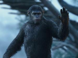 Dawn Of The Planet Of The Apes: The Survivors (Uk)