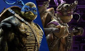 Which Ninja Turtle Hero Are You?